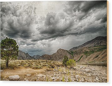 Dark Skies At Grant Lake Wood Print by Cat Connor