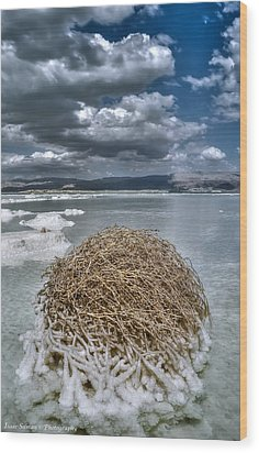 Dead Sea Monuments Of Nature  Wood Print by Isaac Silman