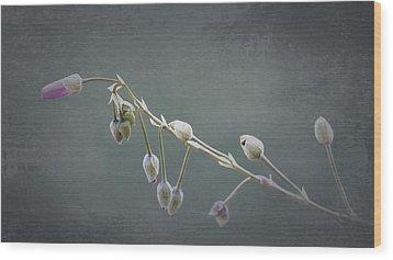 Delicate Wood Print