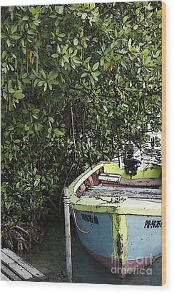 Wood Print featuring the photograph Docked By The Mangrove Trees by Lilliana Mendez