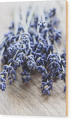 Dried Lavender Wood Print by Elena Elisseeva