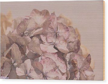 Dried Softness Wood Print