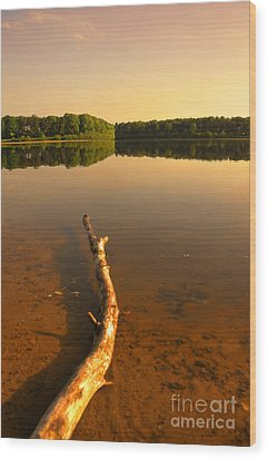 Drift Wood Wood Print by Svetlana Sewell
