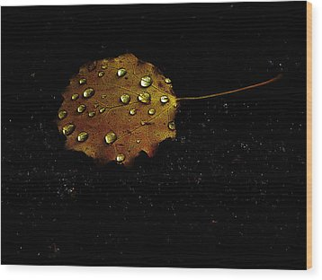 Drops On Autumn Leaf Wood Print