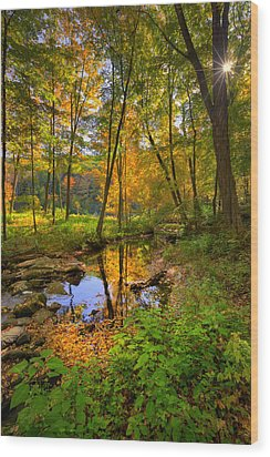 Early Autumn Wood Print by Bill Wakeley