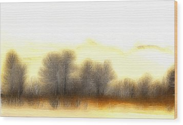 Early In The Morning Wood Print by Steve K