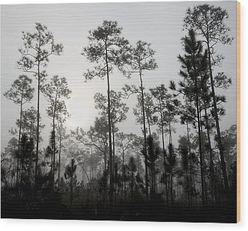 Early Morning Fog Landscape Wood Print by Rudy Umans