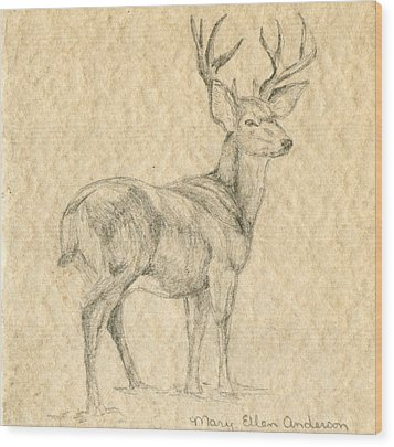 Wood Print featuring the drawing Elk by Mary Ellen Anderson