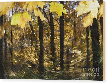 Fall Abstract Wood Print by Steven Ralser