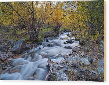 Fall At Big Pine Creek Wood Print by Cat Connor