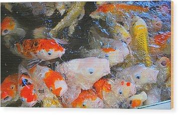 Fish Wood Print by Tonyah Nichols