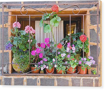 Flowers In A Mexican Window Wood Print