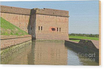 Fort Pulaski Moat System Wood Print by D Wallace