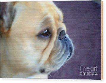 French Bulldog Head Study Wood Print by Barbara Chichester
