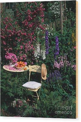 Garden With Chair Wood Print by Hans Reinhard