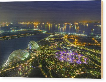 Gardens By The Bay Wood Print by Mario Legaspi