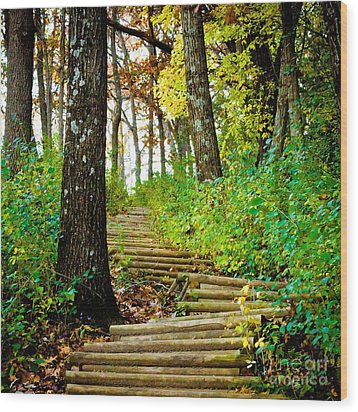 Wood Print featuring the photograph Garvin Heights Stairway by Kari Yearous