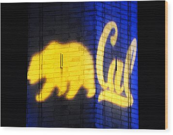 Golden Bear And Cal Logo Wood Print