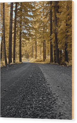 Golden Pines Wood Print