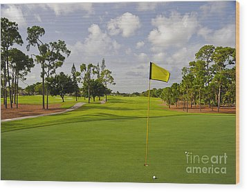 Golf Course Wood Print by M Cohen