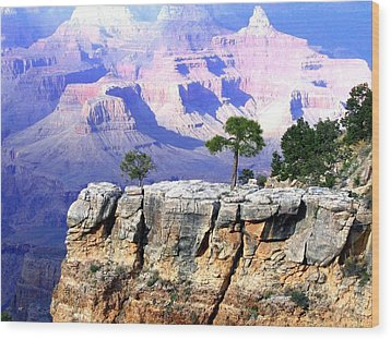 Grand Canyon 1 Wood Print by Will Borden