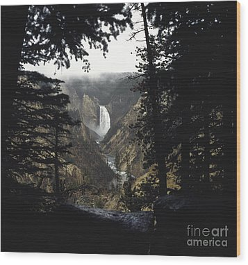 Grand Canyon Of The Yellowstone-signed Wood Print