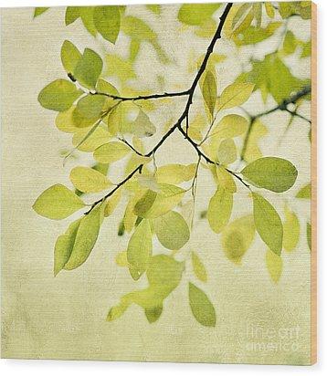 Green Foliage Series Wood Print by Priska Wettstein