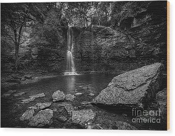 Hayden Falls Wood Print by James Dean