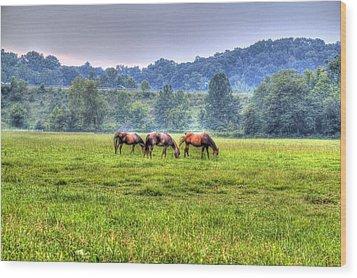 Horses In A Field Wood Print