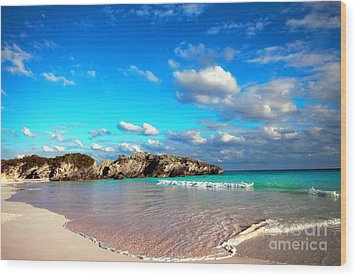 Horseshoe Bay In Bermuda Wood Print