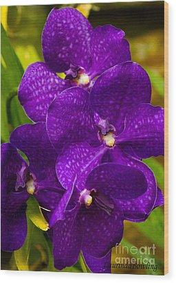 Play On Purple Wood Print by Laurinda Bowling