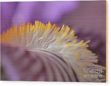 Iris Wood Print by Rebeka Dove