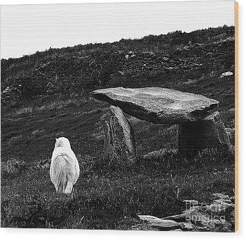 Irish Standing Stones Wood Print by Patricia Griffin Brett