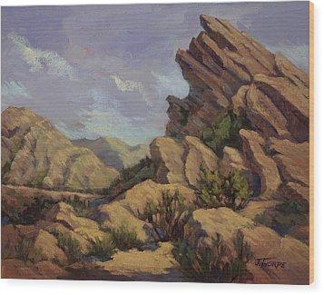 Vasquez Sunpocket Wood Print by Jane Thorpe