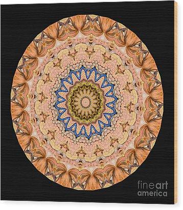 Kaleidoscope Anatomical Illustrations Seriesi Wood Print by Amy Cicconi
