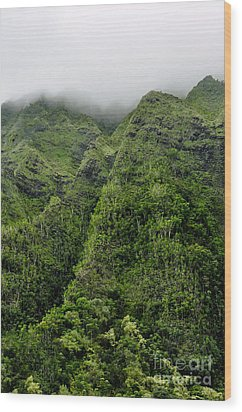 Wood Print featuring the photograph Ko'olau Mountain by Gina Savage