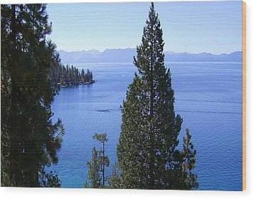 Lake Tahoe 4 Wood Print by J D Owen