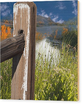 Landscape With Fence Pole Wood Print