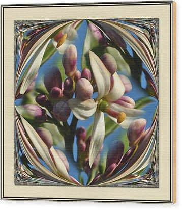 Lemon Tree Flower  Wood Print