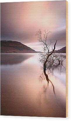 Loch Lomond Wood Print by Grant Glendinning