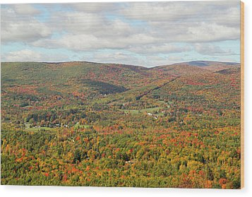 Looking Out Over The Autumn Landscape Wood Print by Susan Pease