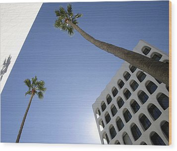 Wood Print featuring the photograph Looking Up In Beverly Hills by Cora Wandel