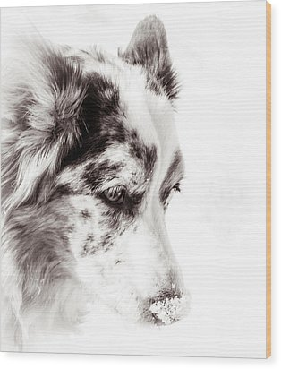 Maggie Wood Print by Cathy Donohoue