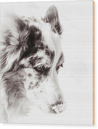 Maggie Wood Print