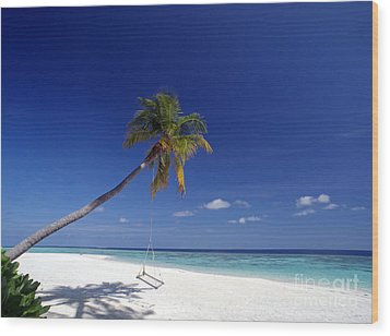 Maldives 06 Wood Print by Giorgio Darrigo