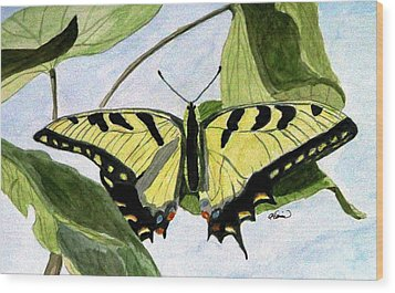 Wood Print featuring the painting Male Eastern Tiger Swallowtail by Angela Davies