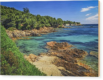 Mediterranean Coast Of French Riviera Wood Print by Elena Elisseeva