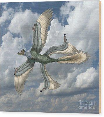 Microraptor Wood Print by Spencer Sutton