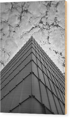Modern Architecture Wood Print