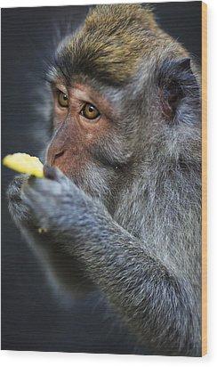 Monkey - Bali Wood Print